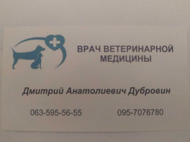 Ветеринарный врач на дом ( Вишневое, Боярка, Святопетровское)
