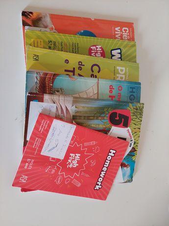 Cadernos de Fichas 5°ano