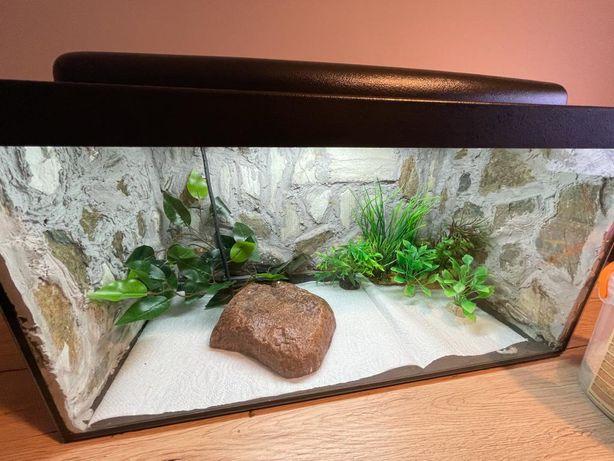 Terrarium z wyposażeniem, kamień grzewczy, lampa UVB, piasek