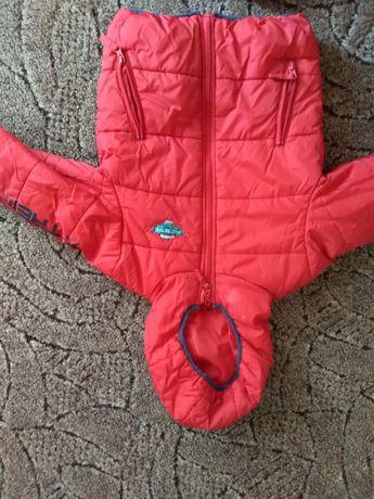 Kurtka jesienno zimowa chłopięca rozmiar 116