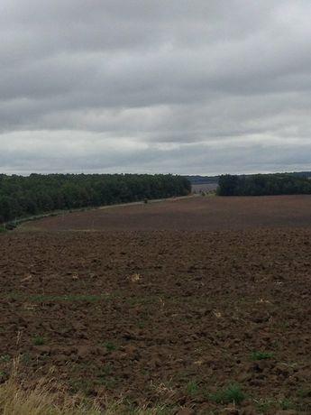 Земельна ділянка Вінницька область