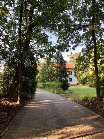 Dom/Siedlisko z lasem oraz dużą ilością budynków gospodarczych