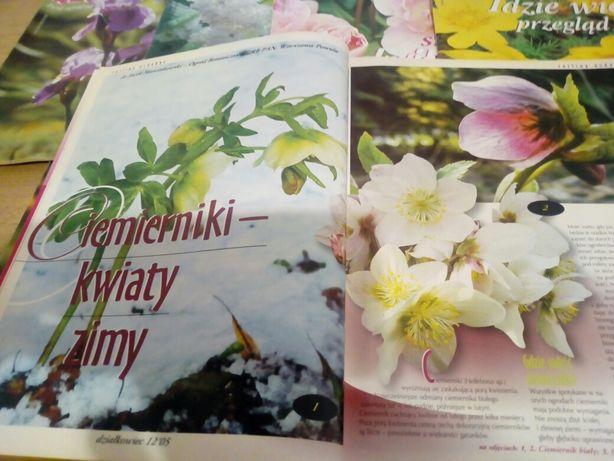Działkowiec 2005 12 numerów komplet