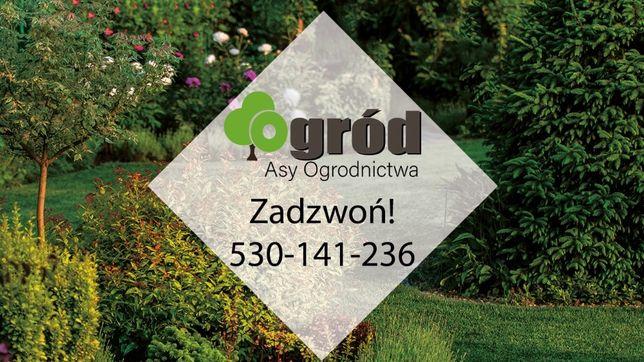 Ogród Asy Ogrodnictwa-Kompleksowe usługi ogrodnicze-brukarskie