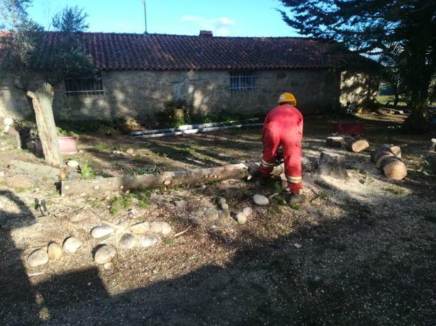 LLP-Limpeza de terrenos/ lavra terrenos/Prestação de serviços