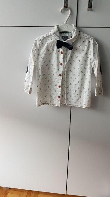 KOMPLET koszula z muszką+spodnie garniturowe COOL CLUB 80