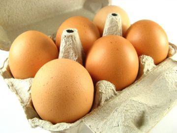 Инкубационное яйцо бройлера Немецкой селекции Кобб-500/Росс-708а