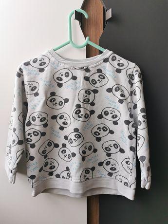 Bluza chłopięca Zara 104