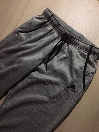 Спортивные штаны Adidas 2019 года
