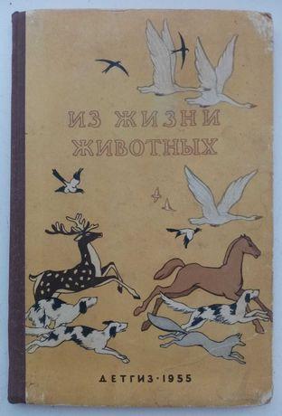 Из жизни животных. Детгиз 1955 год.