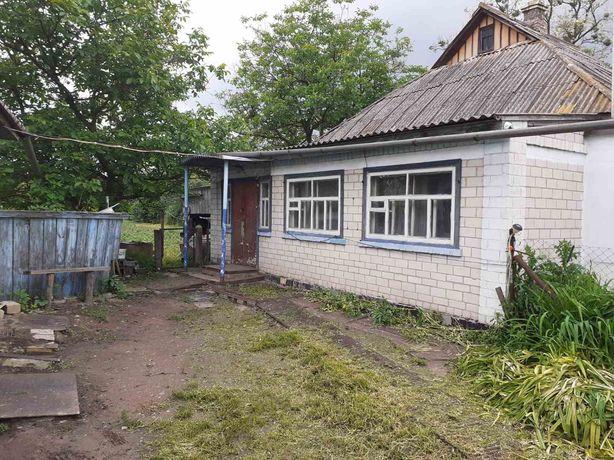 Продам будинок в с. Хоцьки