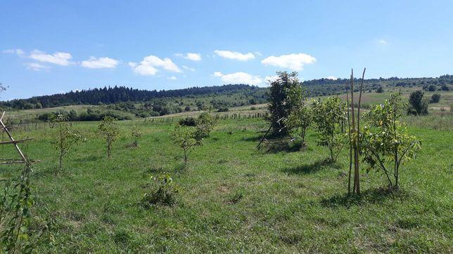Земельна ділянка в горах
