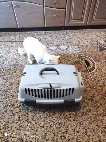 Переноска для котов и собак