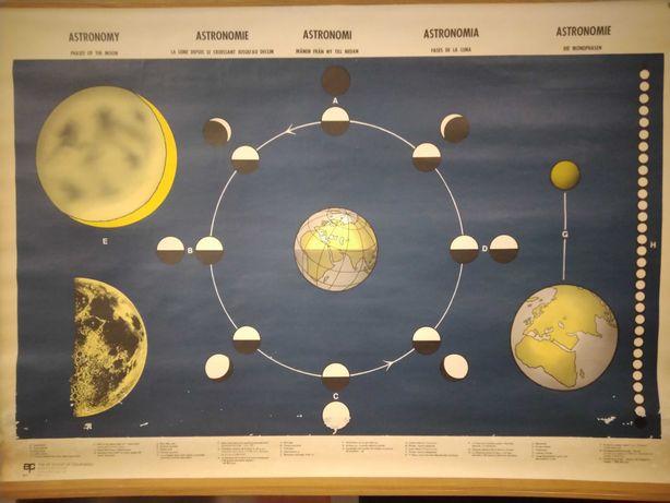 Astronomia. Antigo Quadro escolar com representação das fases da lua.