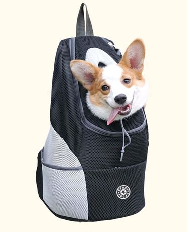 Plecak na dla psa