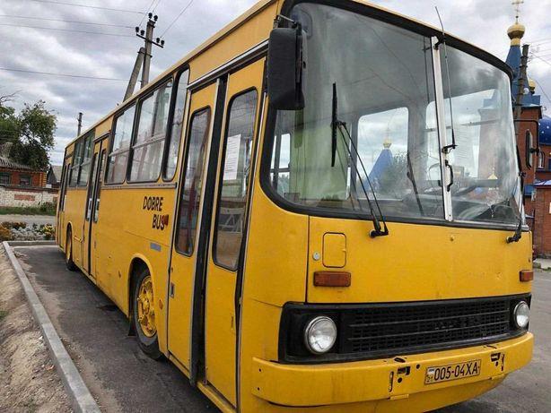 Автобус Икарус Ikarus
