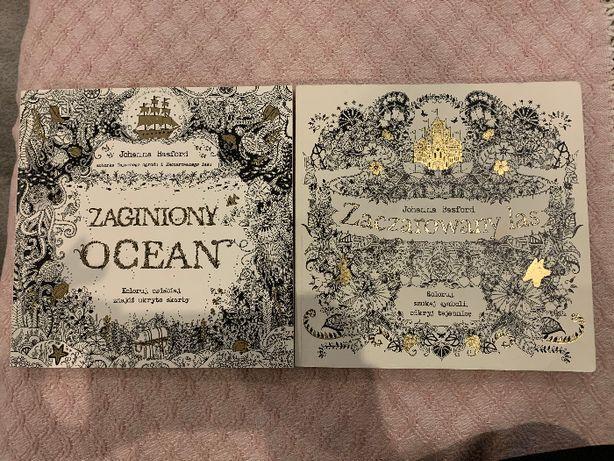 "Kolorowanka ""Zaginiony Ocean"" i ""Zaczarowany las"""
