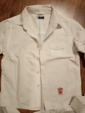 Koszule białe 116