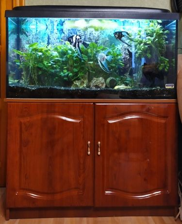 Продам б/у аквариум 200 л. в полном комплекте.