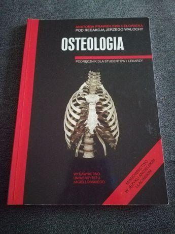 Osteologia anatomia