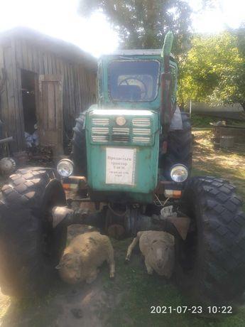 Продам трактор Т40-МА
