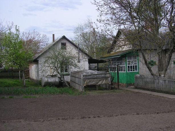 Срочная продажа дома в с.Недра, Барышевский район
