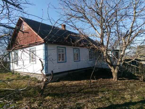 Продам житловий будинок в с.Нова Котельня Андрушівського району