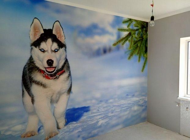 Шпаклевка, поклейка обоев, фотообоев, покраска стен и потолков, багеты