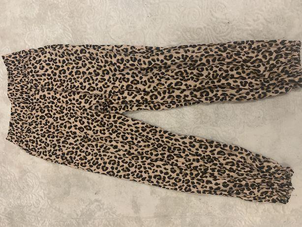 Подарую ласіни леопард