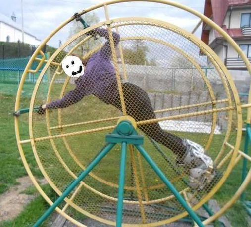 KOŁO DO ćwiczen akrobacji salta ,obroty, koło reńskie