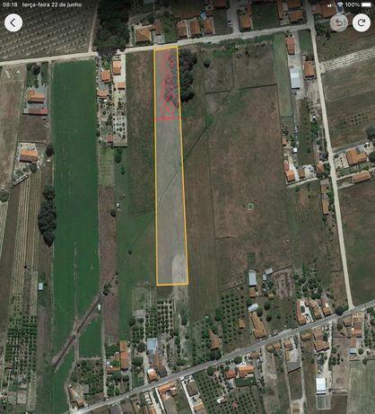 Terreno Misto com 7.780m2