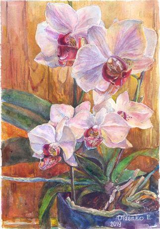 Акварель цветы недорого