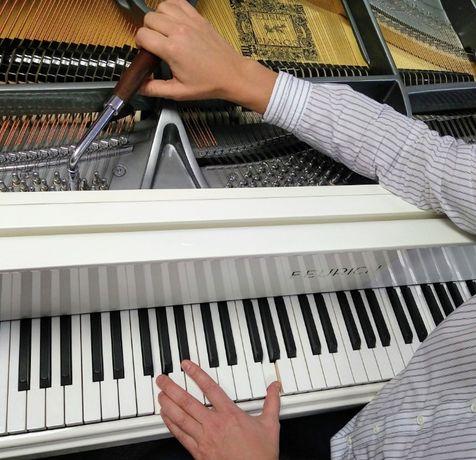Фортепиано: настройка и обслуживание (пианино и рояли)