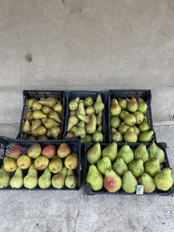 Продам якісну грушу з власного саду груша з холодильника