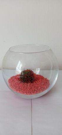 Akwairum w kształcie kuli