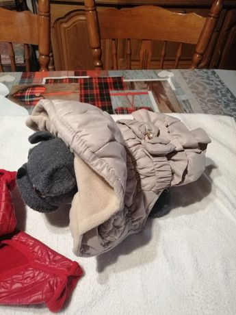 Ubranko dla małego pieska kurteczka
