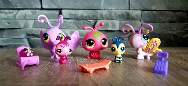 Littlest Pet Shop LPS Figurki owadów LPS + akcesoria
