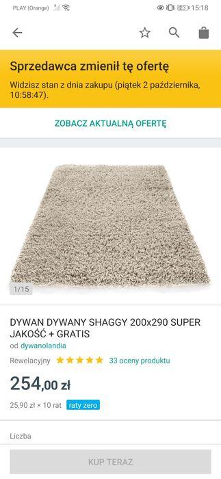 Dywan  200 x 290 Sędziszów Małopolski - image 1