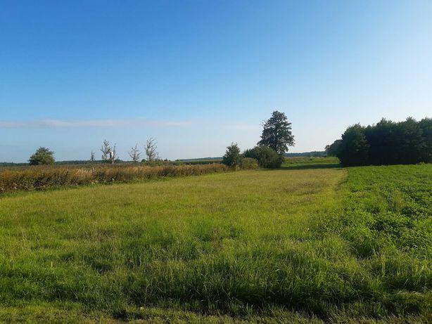 Działka rolna grunt budowlana rekreacyjna siedlisko Opole