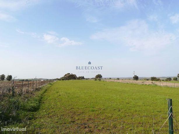 Herdade com 16,5 hectares situada em Beja