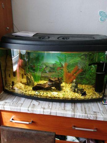 Akwarium 112 litry