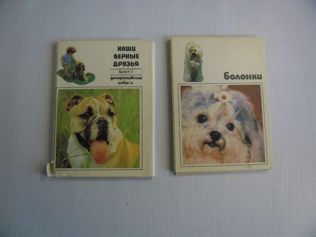 Комплект открыток. Декоративные собаки. 1991