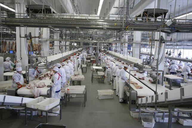 Запрошуємо інвестора, 50% - 2.5 млн $, діюче виробниче підприємство.