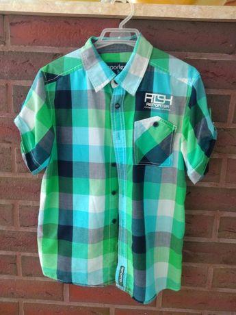 Koszula rozmiar 146