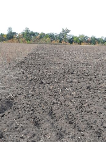 Земельный пай 5,14 гектар срочно.