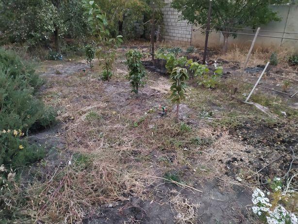 Копка земли садового участка