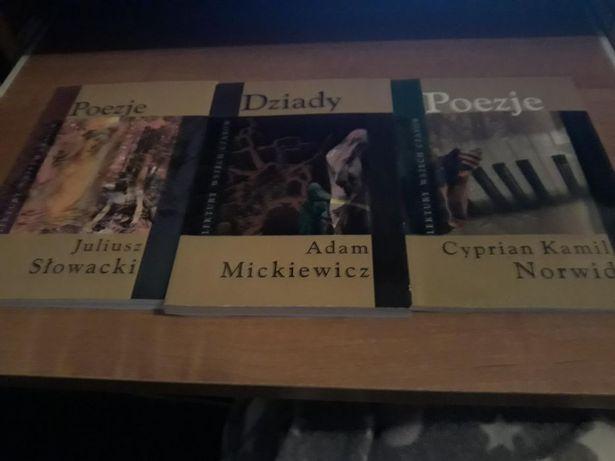 Lektury 2