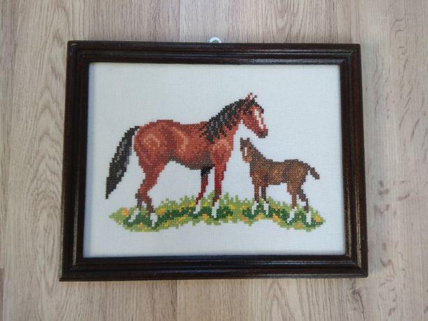Konie - haft krzyżykowy