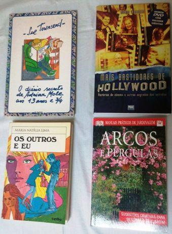 Livros a 2 euros O mistério dos cheques carecas