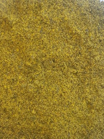 Makuch rzepakowy ot producenta 34%bialko